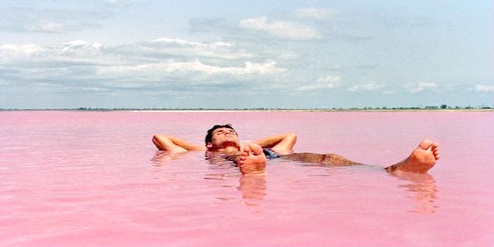 Pink Color Hillier Lake In Australia